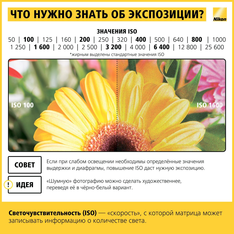Как научиться фотографировать: пошаговая инструкция от Nikon Info_nikon_07