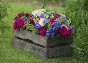 flowerbeds01