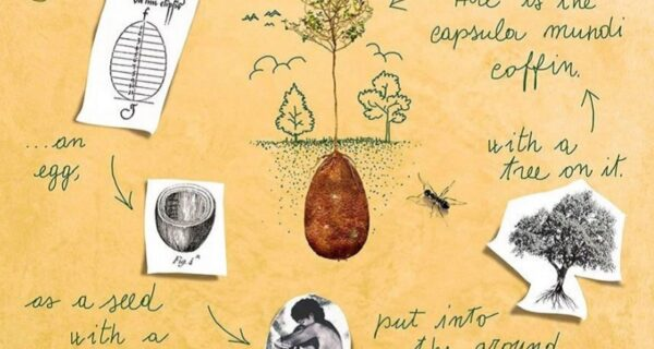 Как экокапсулы из Италии превратят усопших в деревья