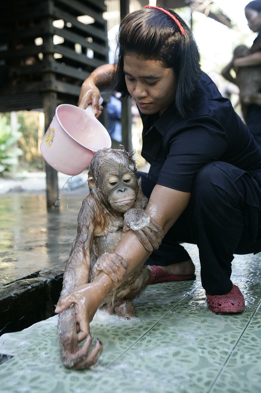 Водичка-водичка, умой мое личико: купание крошки ...: http://bigpicture.ru/?p=649461