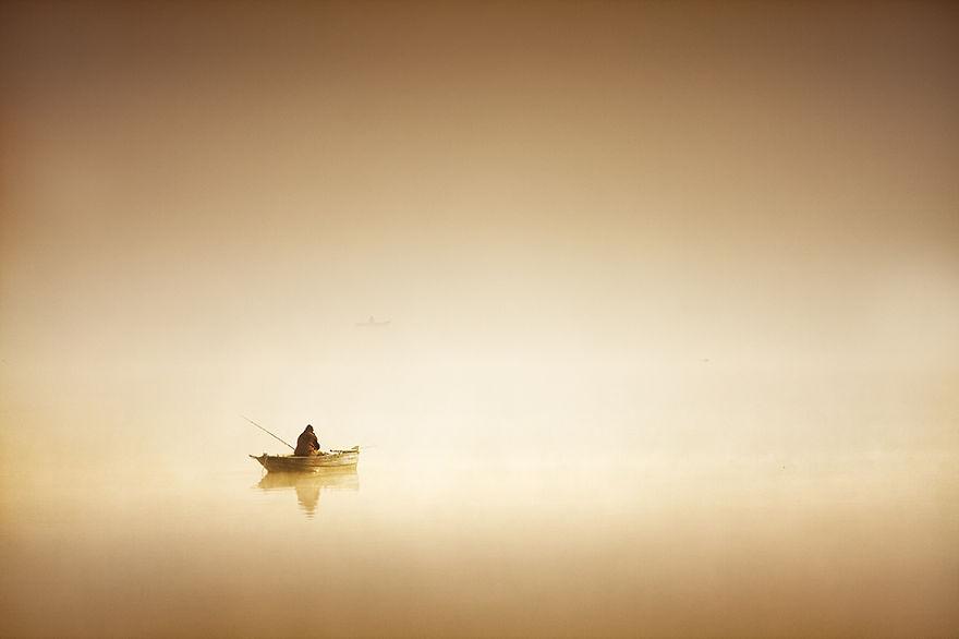 239 - Туманная жизнь на озере