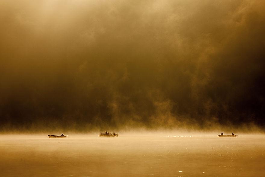 919 - Туманная жизнь на озере