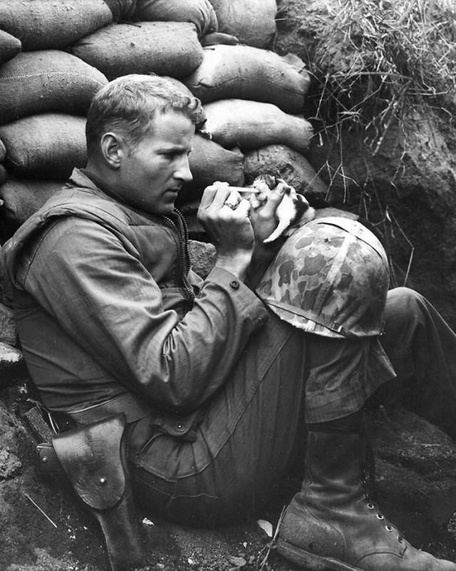 солдаты со своими котиками
