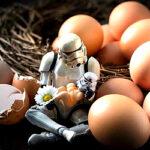 Чем занимаются штурмовики из «Звездных войн» на досуге?