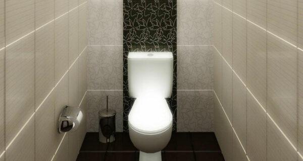 Вокруг света за 80 туалетов