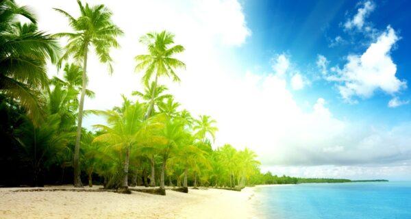 22 удивительных пляжа с белоснежным песком
