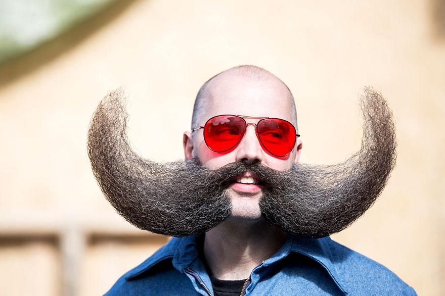 Прикольные прически на бороде