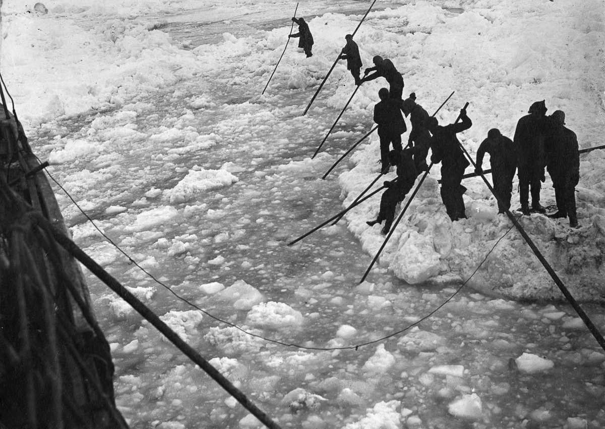 exploring the limits of survival throughout an attempt to cross antarctica in endurance by ernest sh Beta3-adrenoreceptors in cardiovascular diseases: new roles for an old receptor quels sont les risques et causes de mort subite chez le sportif.