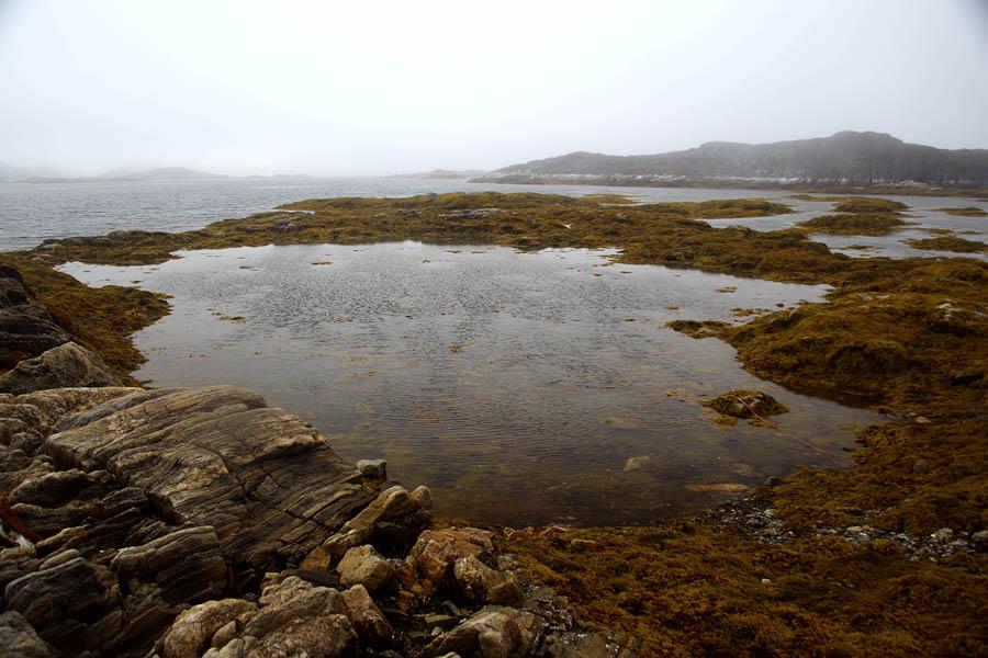edgeoftheworld45 Гренландия на яхте: 2 недели на краю света