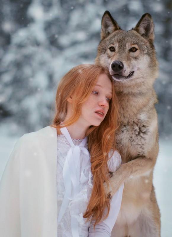 Секс зверей в природе