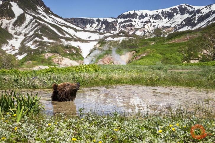 Геннадий Юсин — Релакс в Долине гейзеров