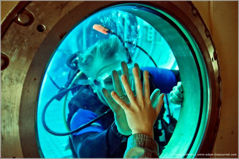 По периметру стенок расположены 45 иллюминаторов, через которые можно проводить кинофотосъемку и визуальные наблюдения за деятельностью космонавтов во время тренировок. «Экспозиция» в гидролаборатории не постоянная: в бассейн погружают именно те модули, которые используются для тренировок в данный момент. Специальный механизм поднимает платформу со дна на поверхность, отработанный убирают и ставят другой. Идентичность железа – стопроцентная. До каждой гаечки, до каждого крючочка и каждого миллиметрика