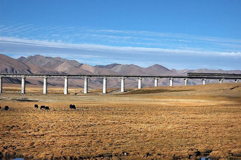 Строительство железной дороги там представляло серьезную инженерную проблему. Дело в том, что верхний слой вечной мерзлоты имеет свойство в краткий летний период оттаивать, порой превращаясь в труднопроходимое болото. В этой связи реальную угрозу представляли подвижки почвы, что могло привести к деформации и разрушению пути. Для того чтобы ликвидировать такой риск, проектировщики Цинхай-Тибетской дороги разработали специальную схему ее устройства, фактически изолирующую какое-либо влияние магистрали на окружающую среду и наоборот.