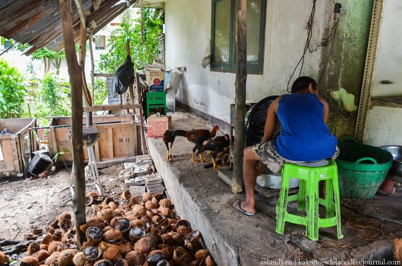 Мужик тем временем добывает кокосовую стружку.