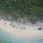Как спастись с необитаемого острова с помощью пальмовых ветвей