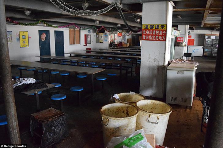 Страх и отвращение в общежитии рабочих фабрики iPhone