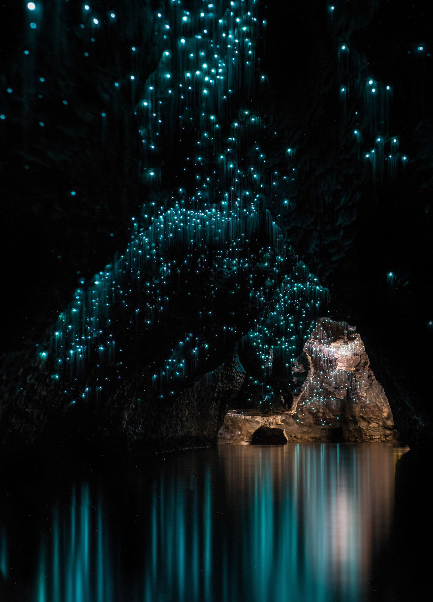 светлячки в пещере