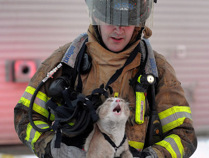 Отважные пожарные, рискнувшие жизнью ради спасения животных