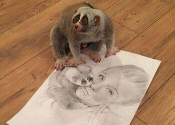 sara_lemur00