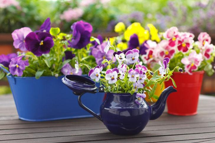 18 классных способов устроить сад прямо у себя дома