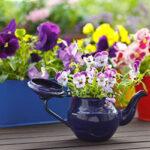 18 классных способов устроить сад прямо у себядома