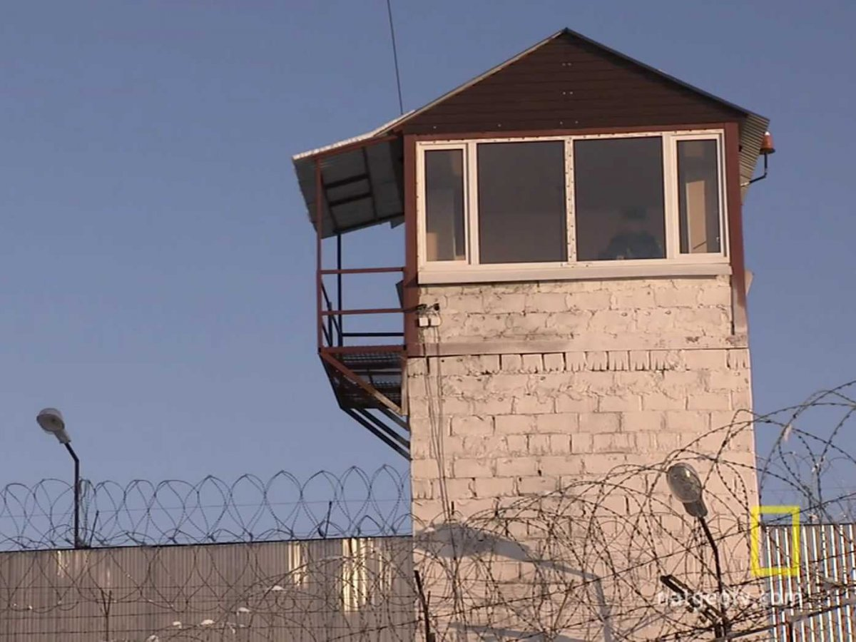Черный дельфин тюрьма местонахождение