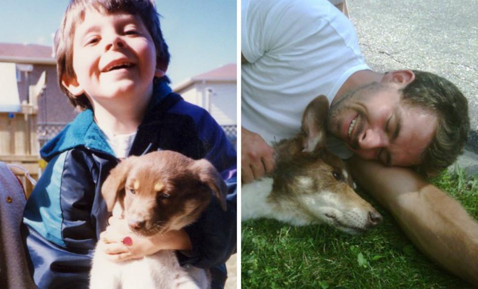 pets-growing-old-head-970