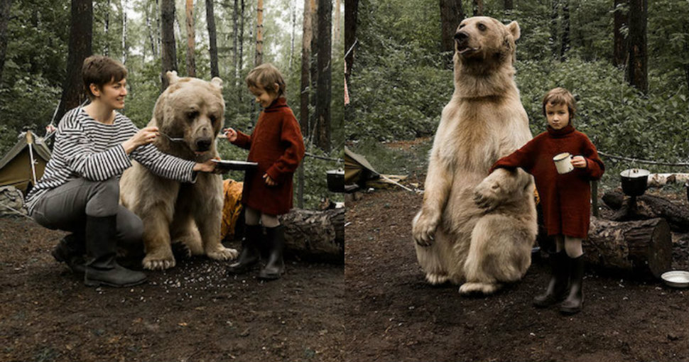 bear-stepan-anti-haunting-campaign-970-head