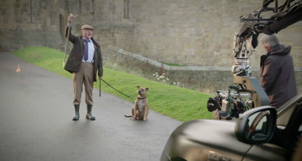 Собака, которая за 6 лет не приглянулась 18 тысячам посетителей приюта, стала кинозвездой