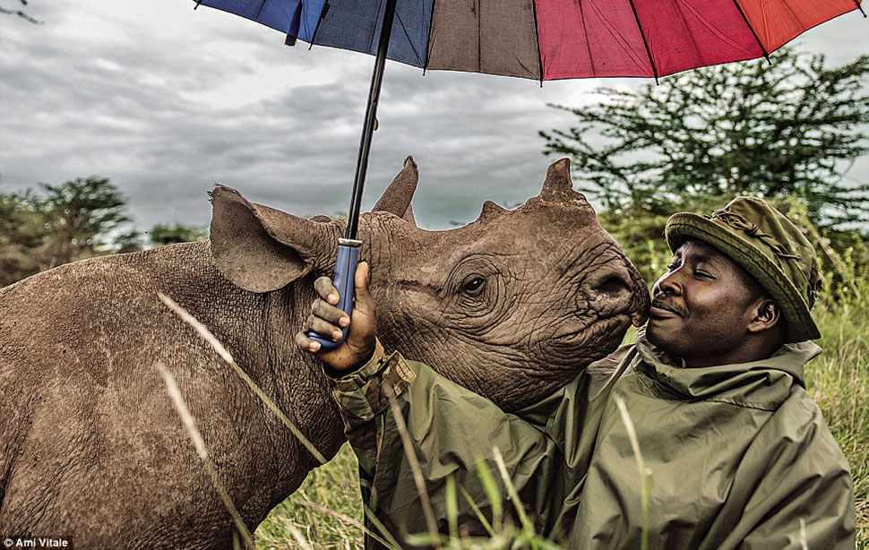 Самые популярные снимки из инстаграма National Geographic