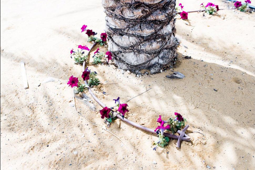 Умирающее Мертвое море