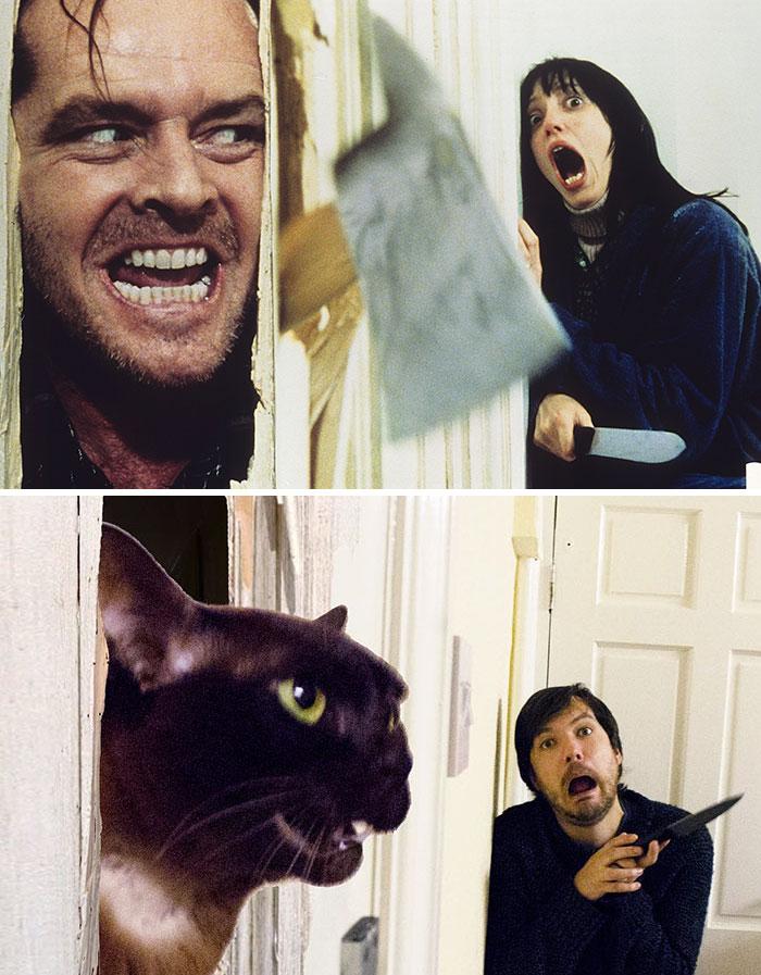 Молодая пара пародирует культовые сцены из фильмов вместе с котами зверушки,живность,питомцы,Животные