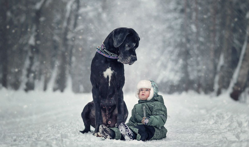 dogs-and-kids-6