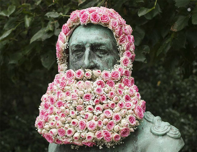 zaglav rose