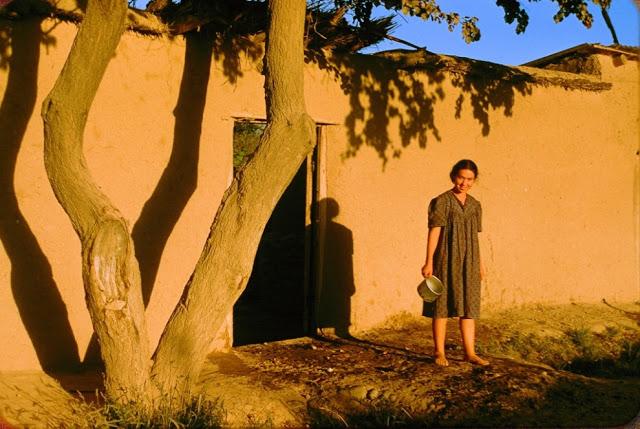 Как жили в Узбекистане полвека назад