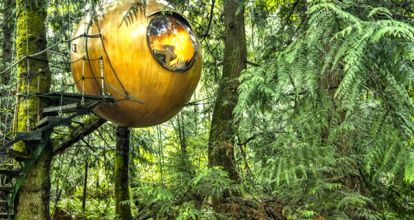 Канадский отель для тех, кто не перестал мечтать о домике на дереве