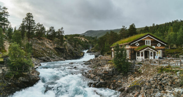 Зачем летом ехать туда, где холодно и дорого, — в Норвегию