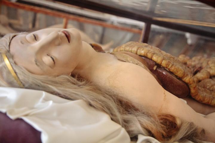 Анатомическая Венера: на ком учились патологоанатомы XVIII века