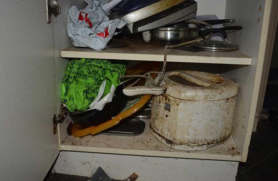 Хуже свиней: арендодатель попал на 5 тысяч фунтов за уборку после неопрятных жильцов