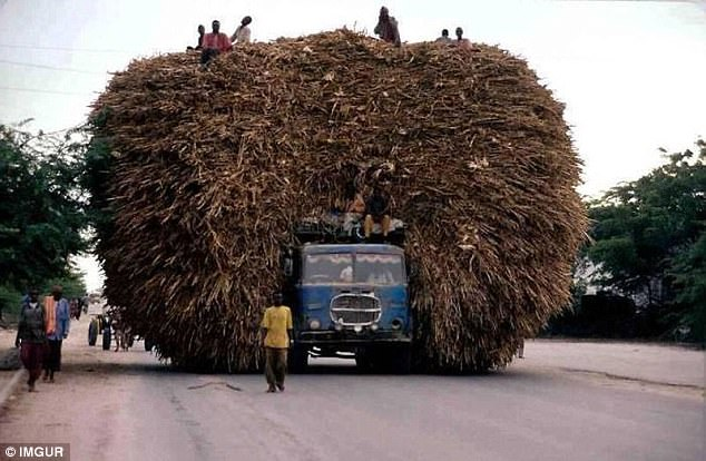 Транспортные перевозки, которые бросают вызов законам физики и здравому смыслу фото