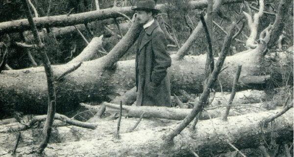 Ураган 1904 года — самый смертоносный в Москве за 100лет