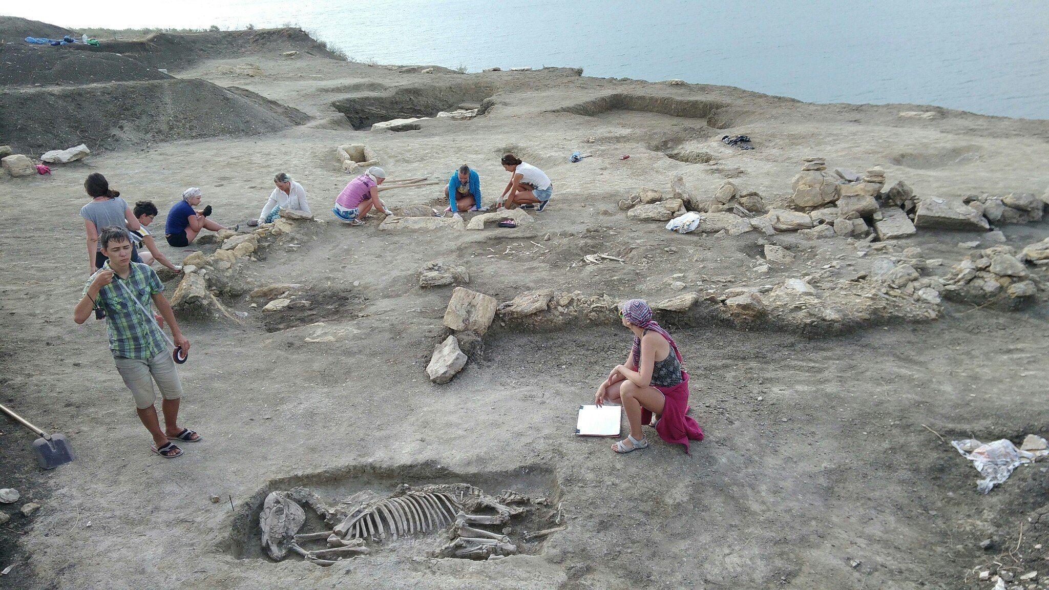 5103 - В Крыму нашли скелет младенца II века с вытянутым черепом