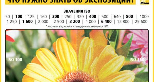 Как научиться фотографировать: пошаговая инструкция отNikon