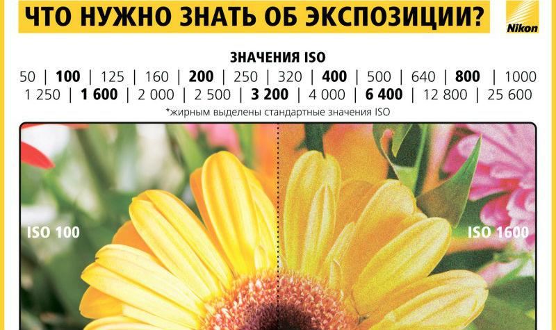 info_nikon_07-800x800