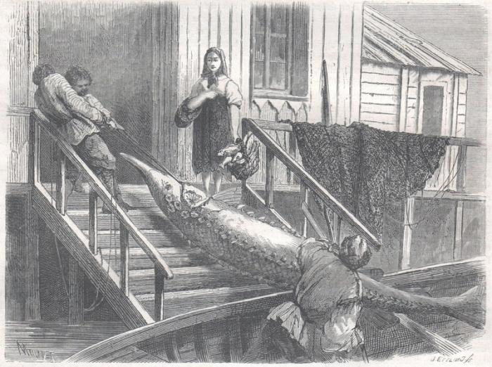 Что русскому хорошо... Зарисовки иностранцев, побывавших в России в середине XIX века фото