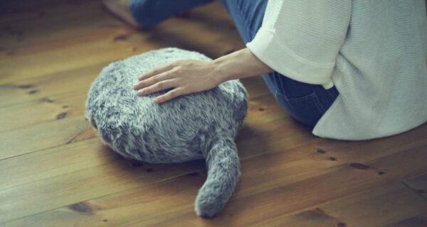 Ты ее гладишь, а она мурчит: японцы создали подушку — заменитель кота
