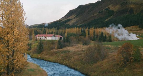 Волонтерство в Исландии, или Как я собирала помидоры на краюсвета