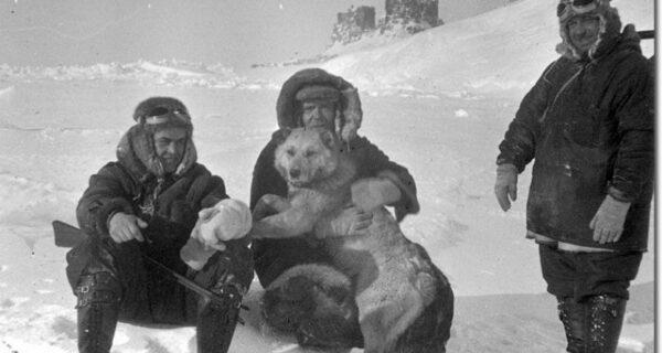 Как советская экспедиция создала первую в мире полярную дрейфующую станцию на льдине