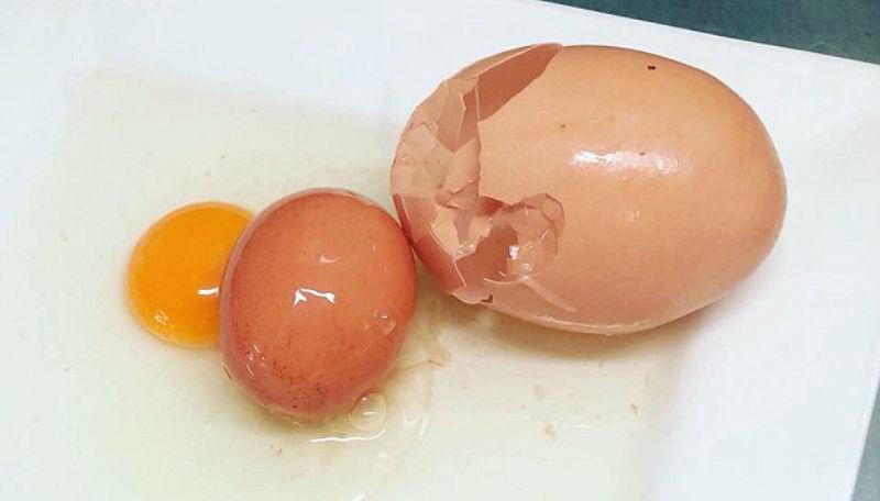 Секс с одно яйцом