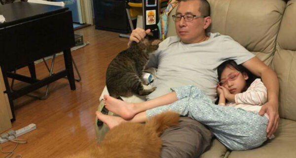 Зачем отец, дочь, собака и кот каждый год на протяжении десятилетия делают одинаковую фотографию